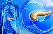 Connection Between Pancreatic Cancer and Diabetes: Not Only Pancreas